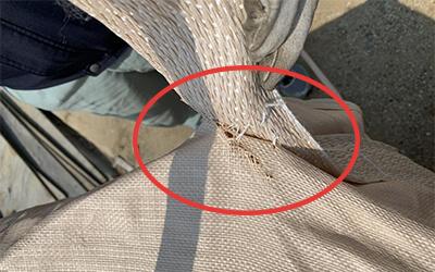 縫い付け部分の破れ